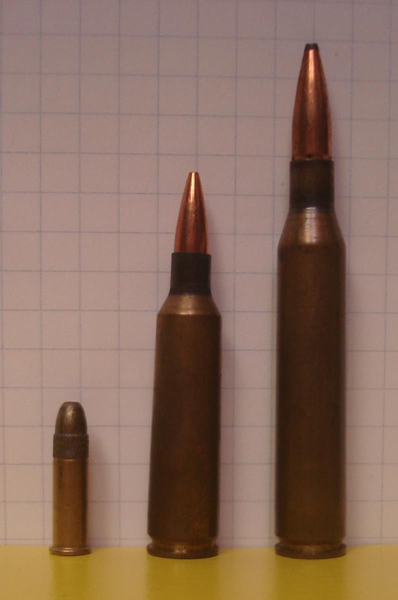 (L-R): .22 Long Rifle, .223 Remington, .22-250 Remington