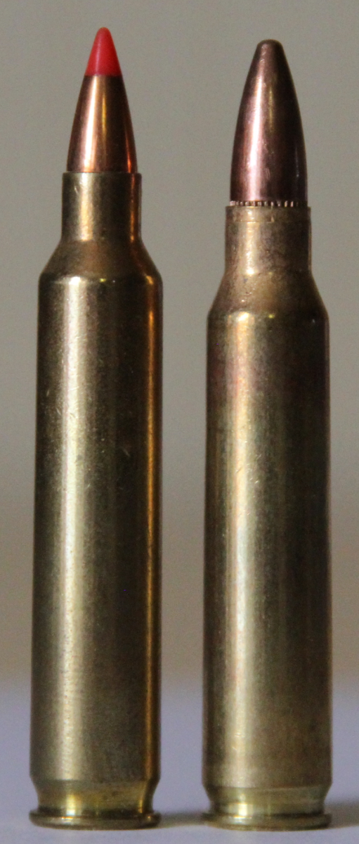 .204 Ruger (left) next to a .223 Remington.
