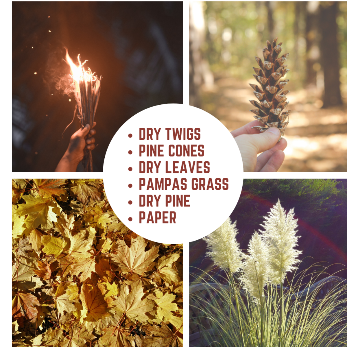 Twigs, pinecones, dry leaves, dry pine, and pampas grass make for good kindling. Pampas grass is extremely flammable and is considered invasive.