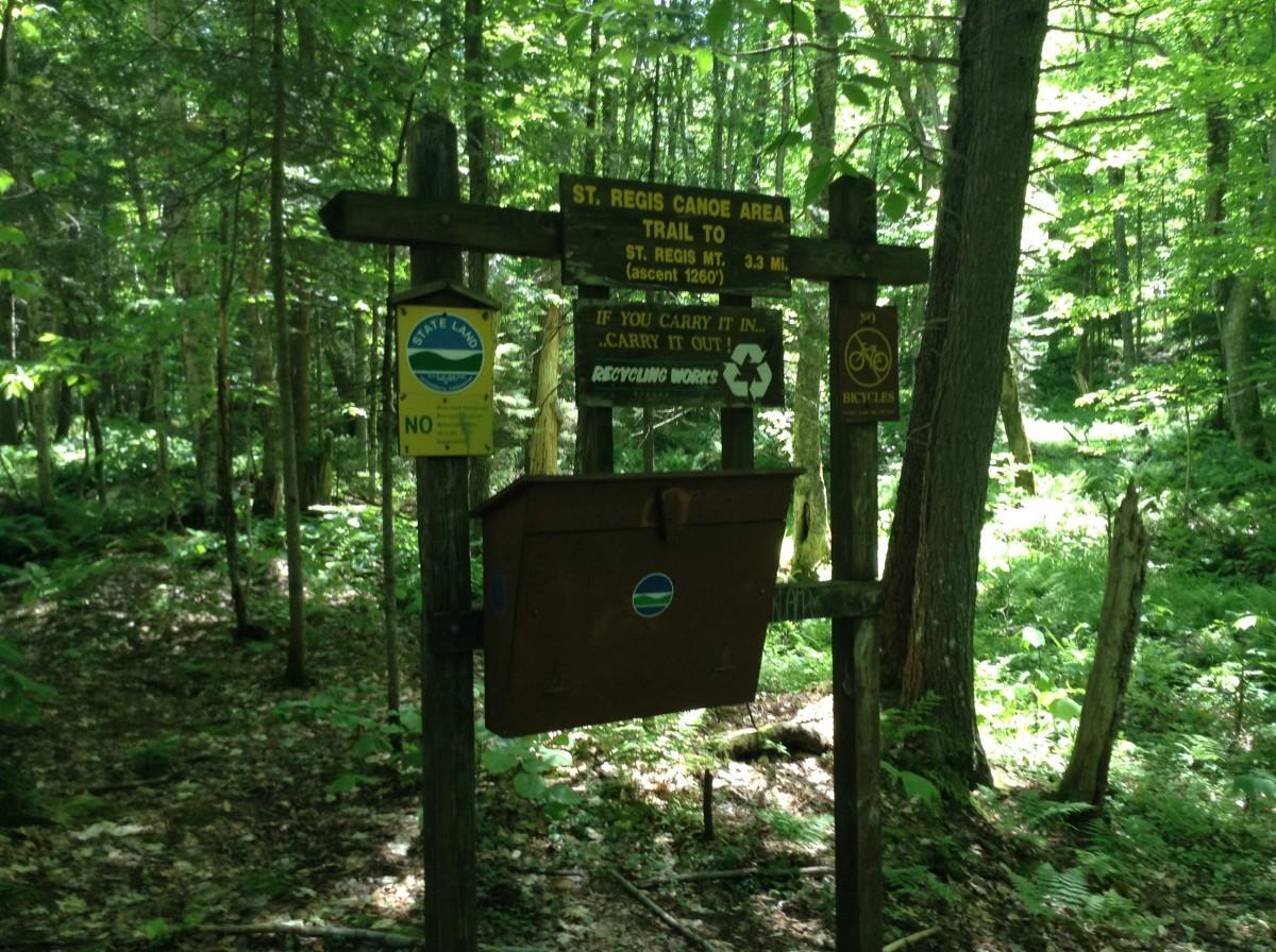 adirondack-hike-st-regis-mountain