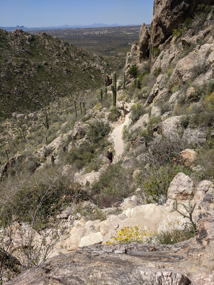 Looking down on trail heading back from Romero Pools hike in Tucson Arizona's Catalina State Park