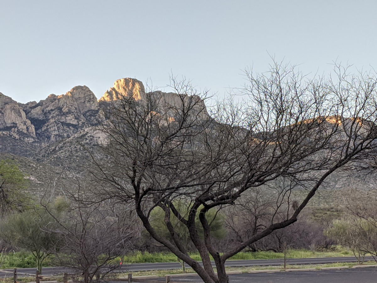 Rays  from early morning Sun touching the tips of Mountain Peaks in Catalina State Park in Tucson, AZ