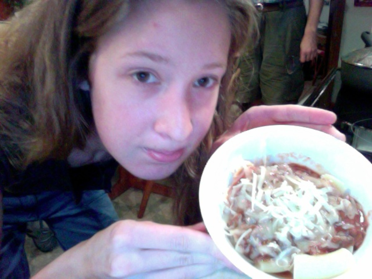 A bowlful of pasta and meat sauce with cheese, before it went into the blender.