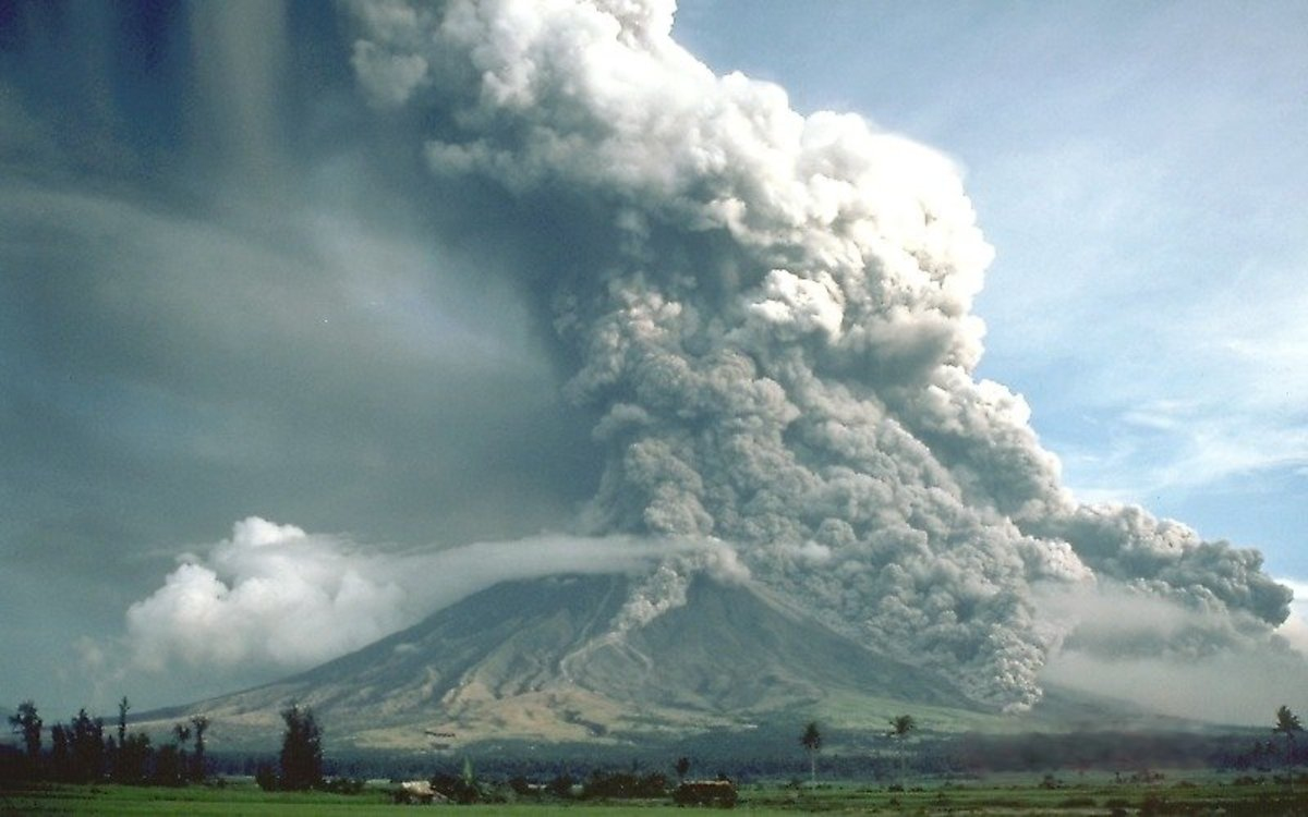 Volcanic ash in the soil causes it to be high in selenium.
