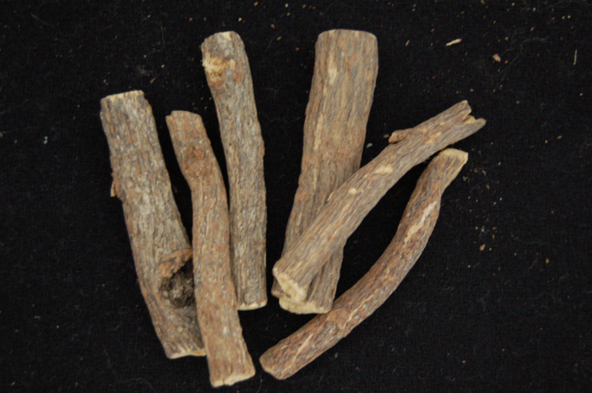Nutritional and Health Benefits of Licorice Root