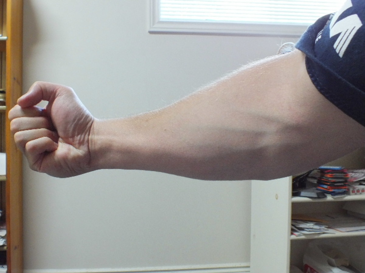 My forearm while flexing.