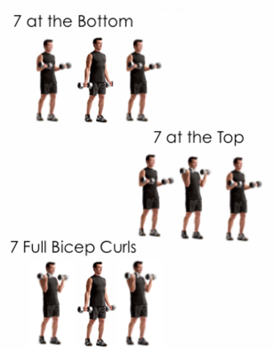 Best 5 Exercises to Build Big Biceps