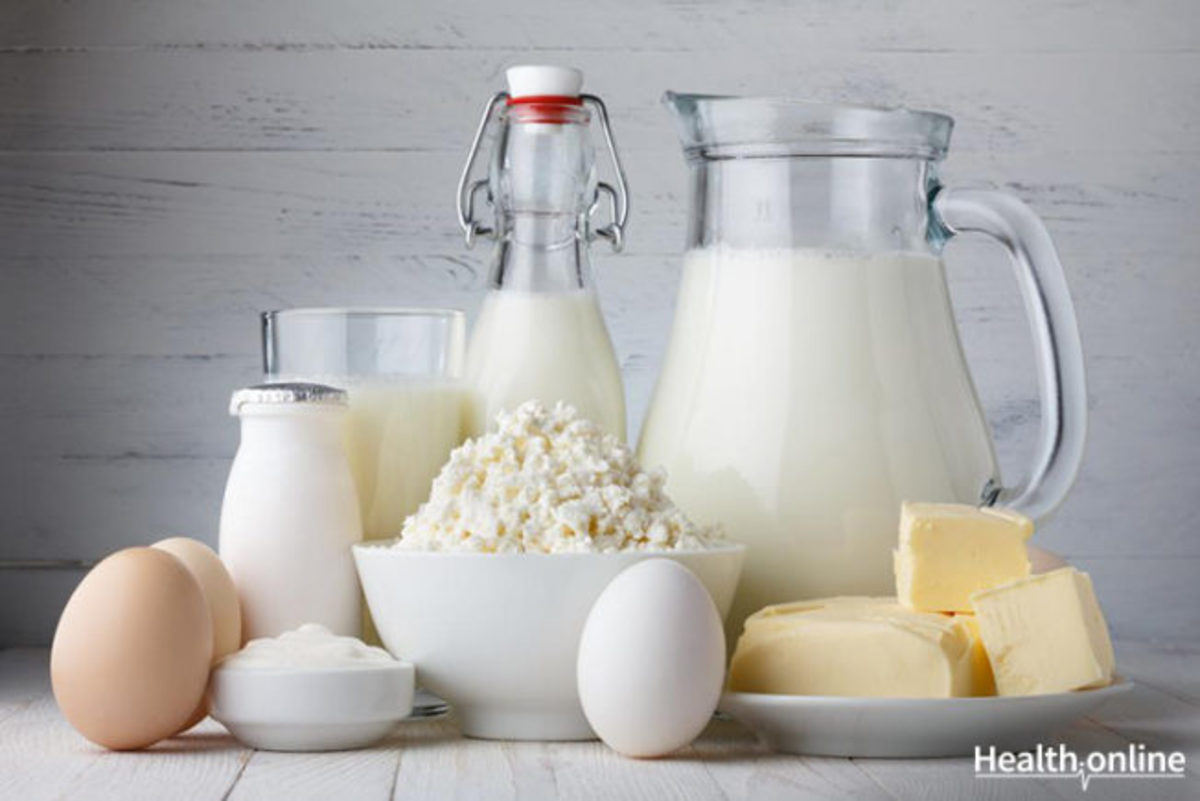Best Protein Sources for Body