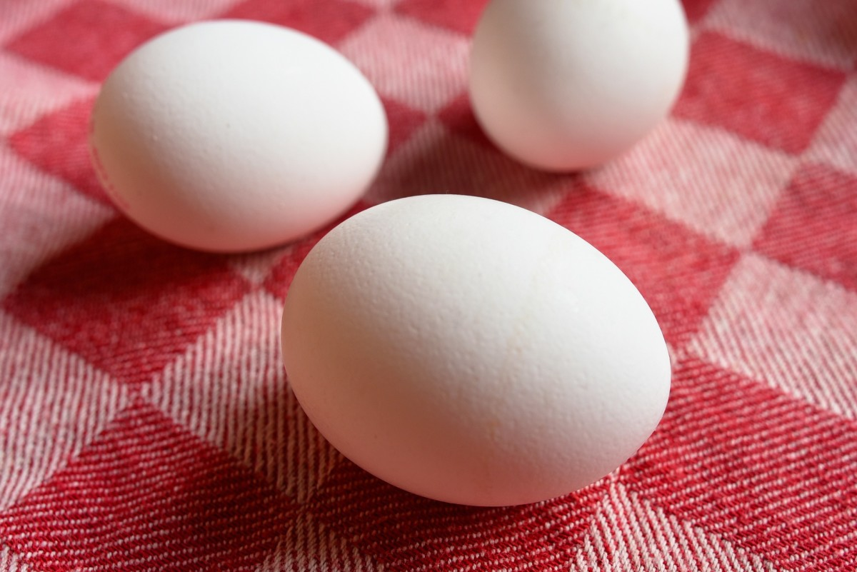Eggs are by far the cheapest protein source you can buy.