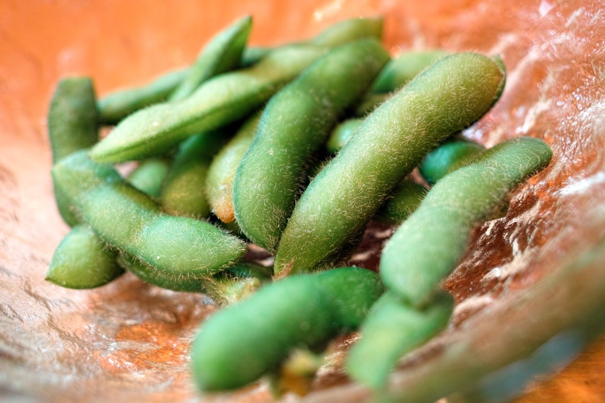 Edamame is a great source of plant protein.