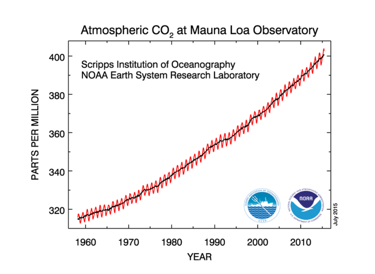 Carbon dioxide in the air is steadily increasing