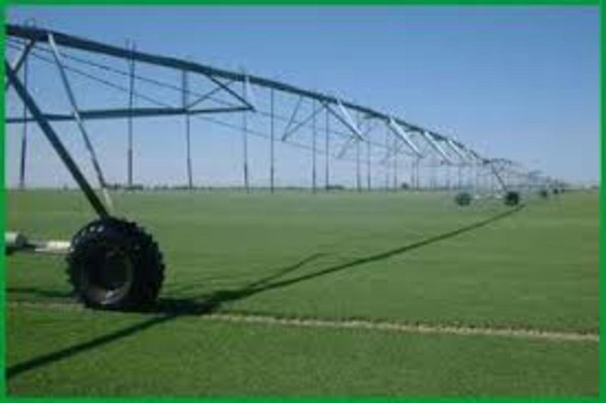 Farmers in the Central Valley depend upon water to irrigate their crops