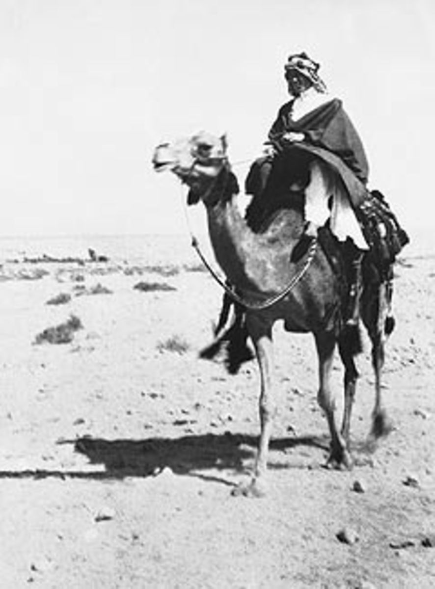 "TE Lawrence, ""Lawrence of Arabia,"" was one of the architects behind building the ""Pandora's Box"" that Iraq became."