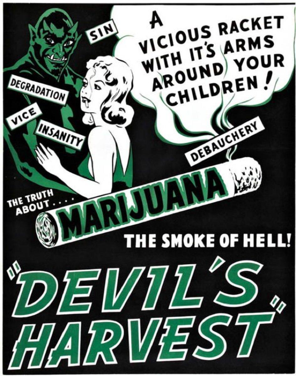 the-real-truth-about-marijuana-no-really