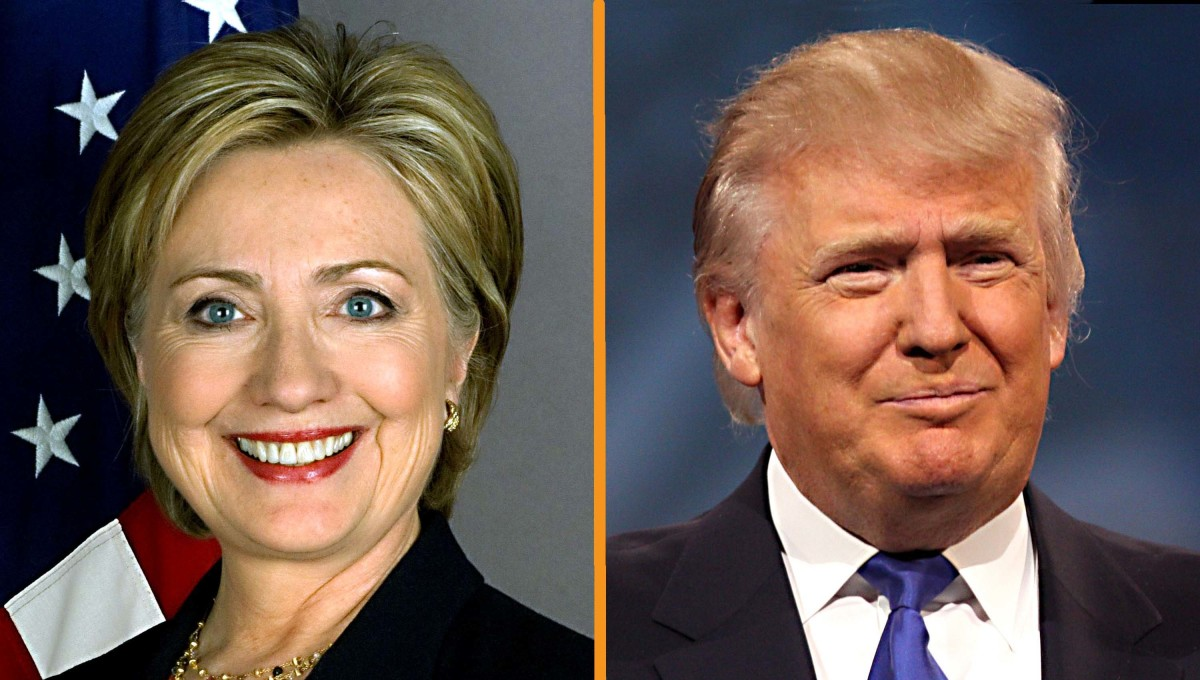 Hillary Clinton and Donald Trump. Mrs Clinton was seen as the most 'establishment' of all possible candidates. Mr Trump is seen as being not a part of the establishment
