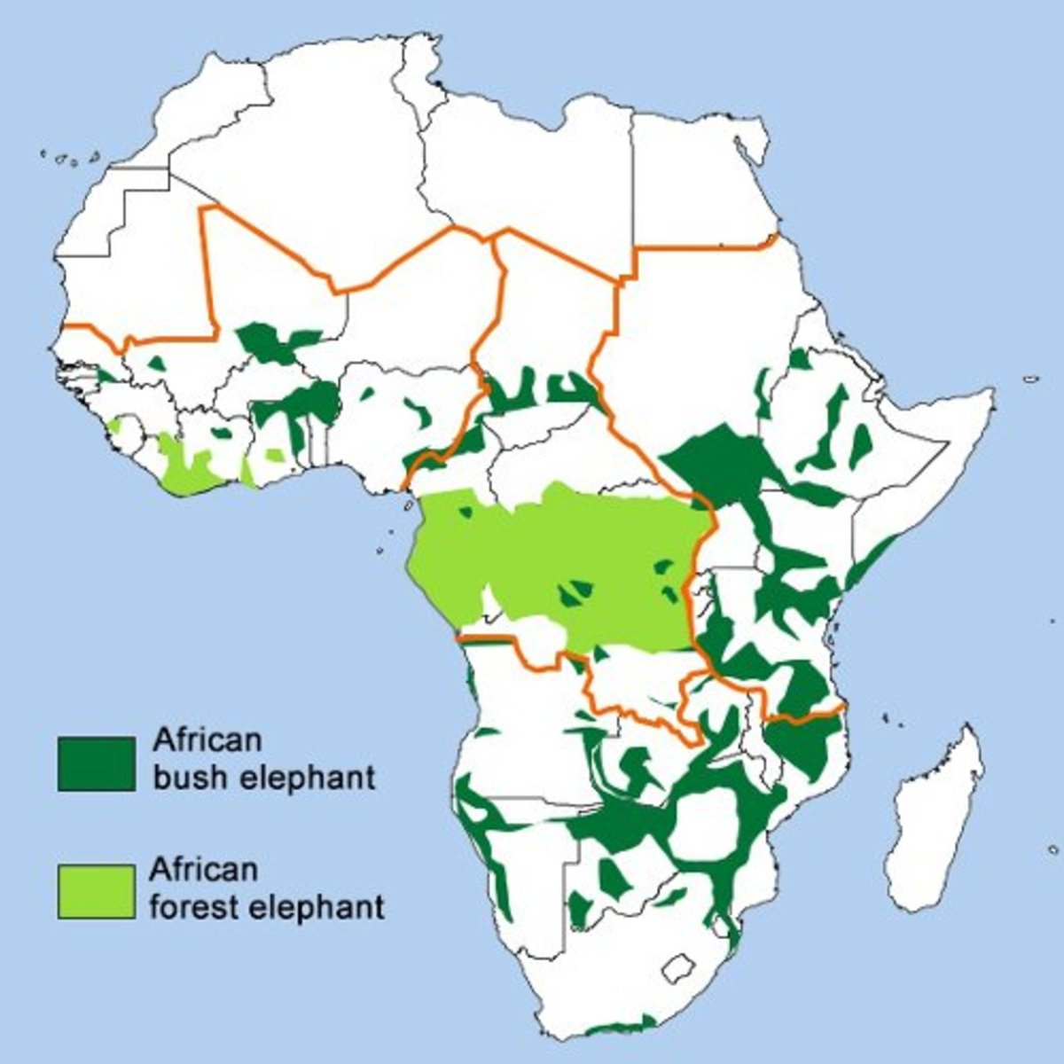Map of the African forest elephant and African savannah elephants' habitat range.