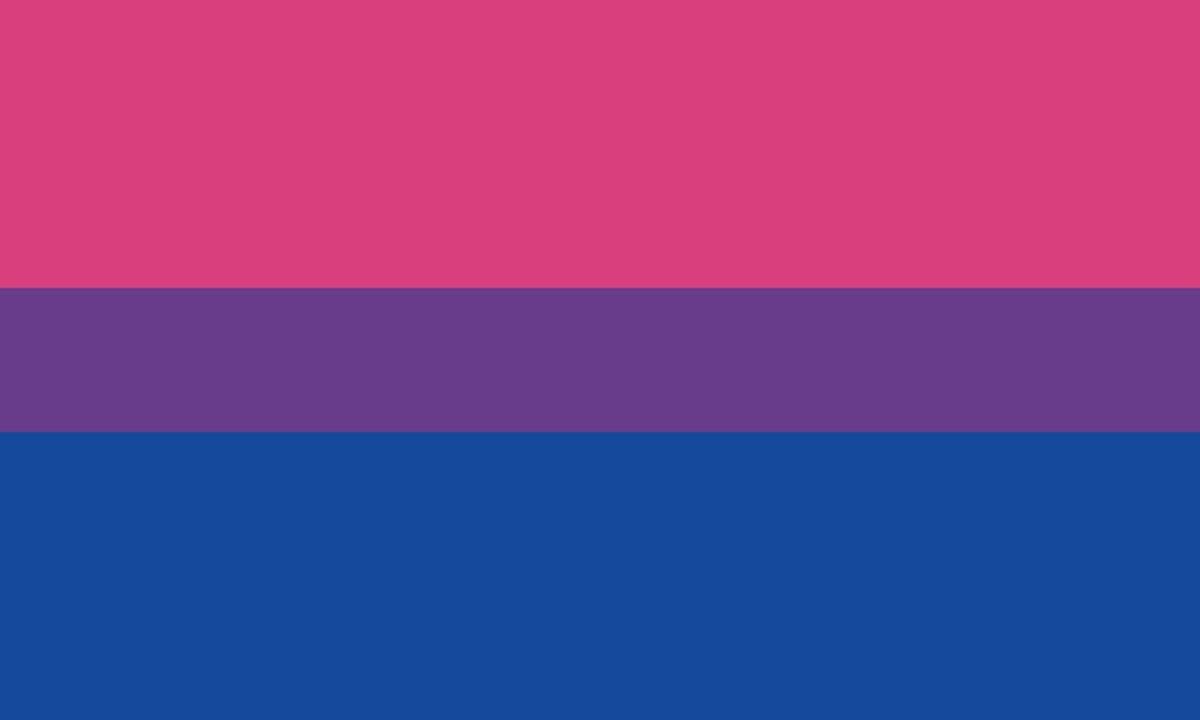 The Bi Pride Flag