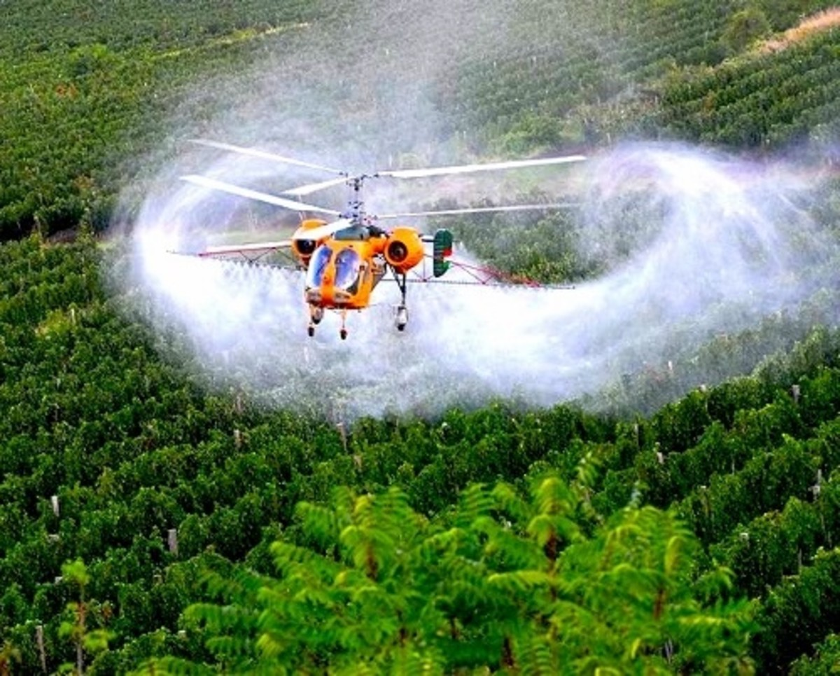 A helicopter dumping fluoride onto crops as a pesticide / insecticide / funcigide