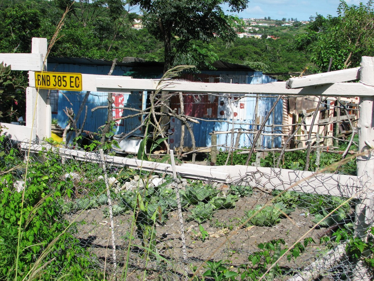 Moving from tribal to urban areas