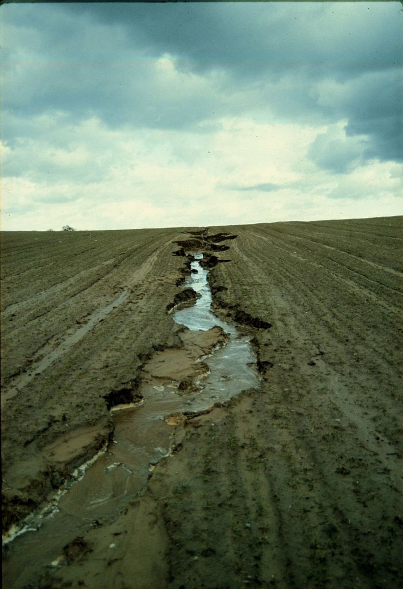Erosion caused by poor farming methods in Germany.