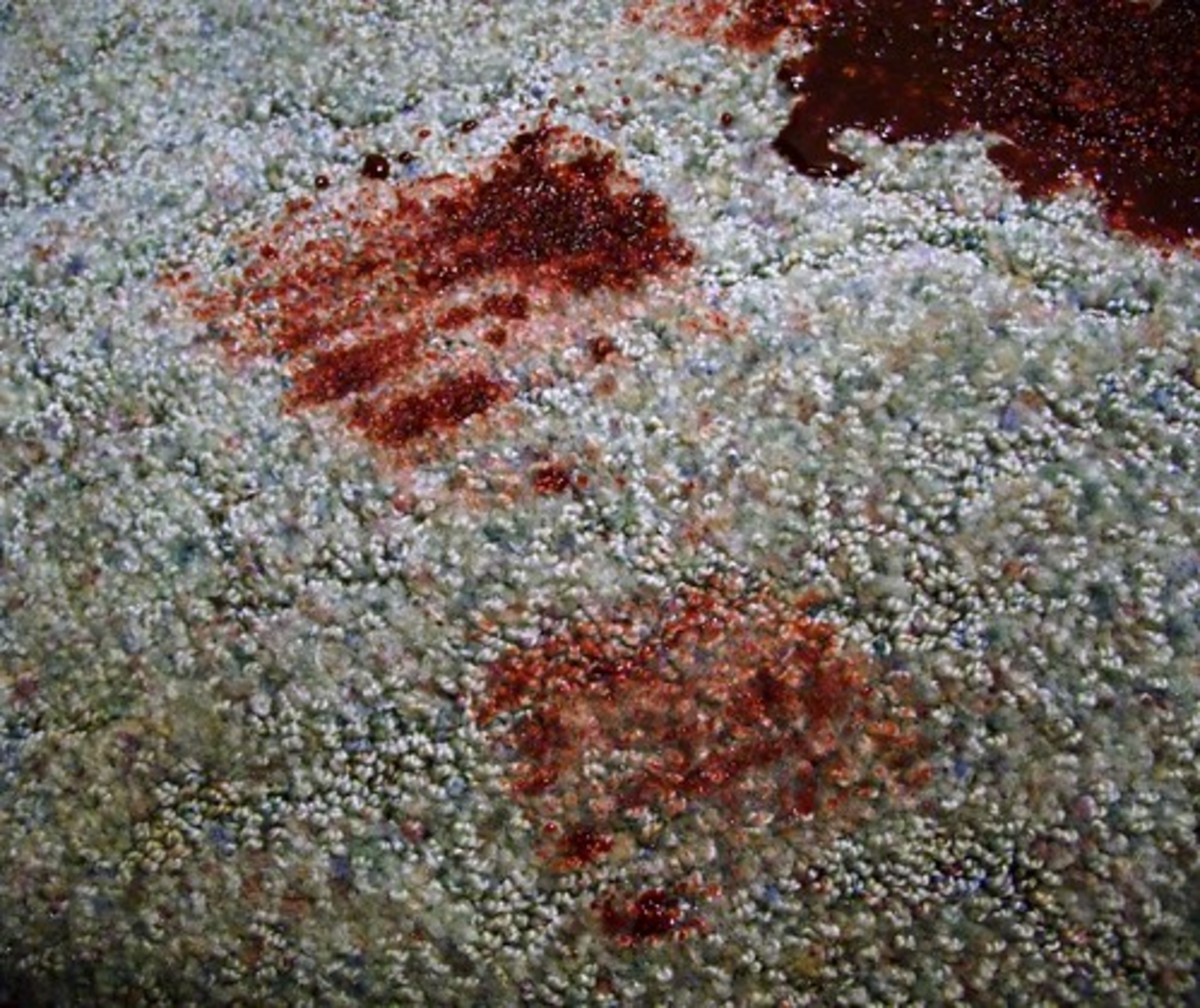 Mary's murderer left a piece of evidence at the scene of the crime: a bloody footprint.