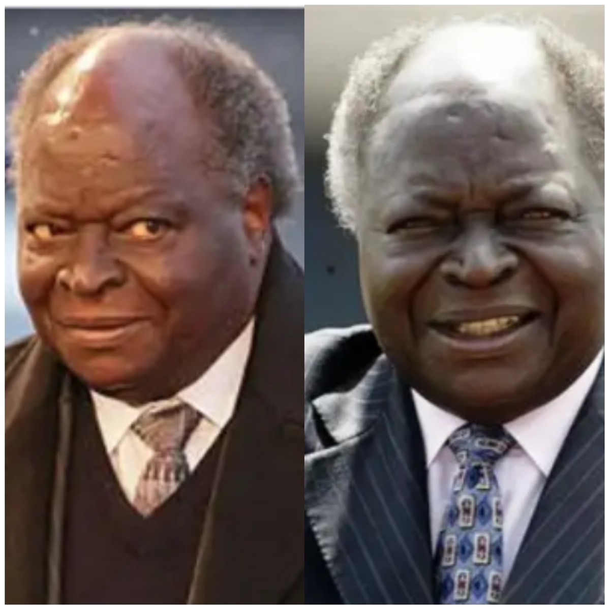 Mwai Kibaki: The Third President of Kenya