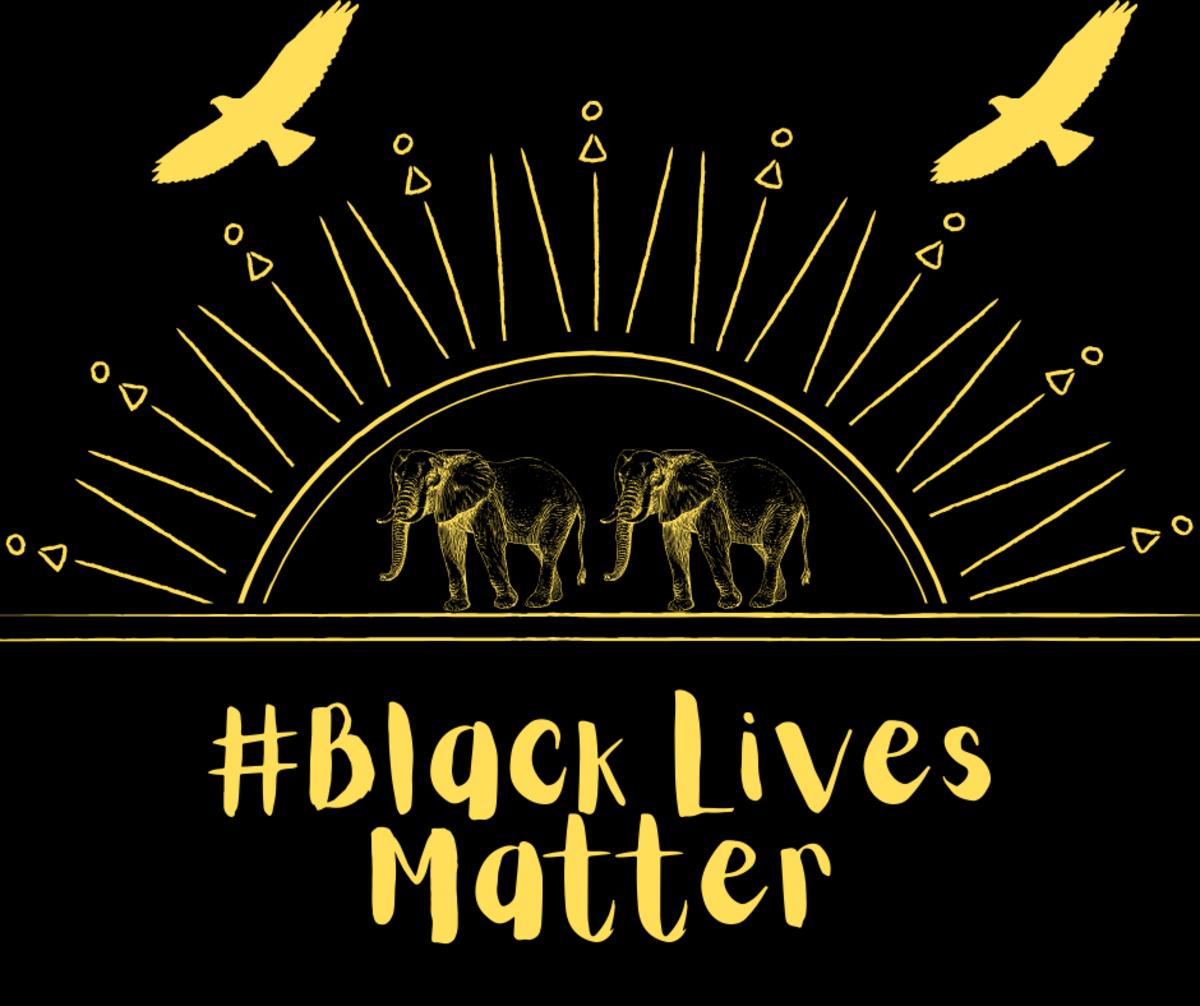 Africans also support #BlackLivesMatter