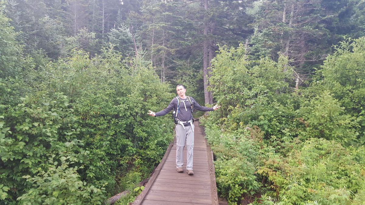 A walking bridge shortly into the hike