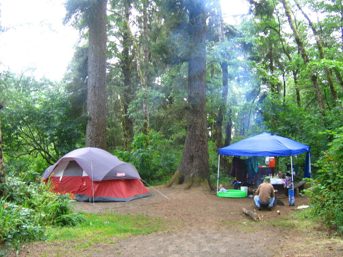 Our tent site at Agate Beach campground was dripping with dew from coastal fog, but the views were spectacular. Family camping is recommended for children who are not prone to wander off. Natural cliff formations are a part of the landscape.