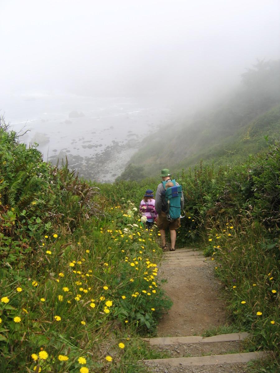 The trail head to Palmer's Point beach.