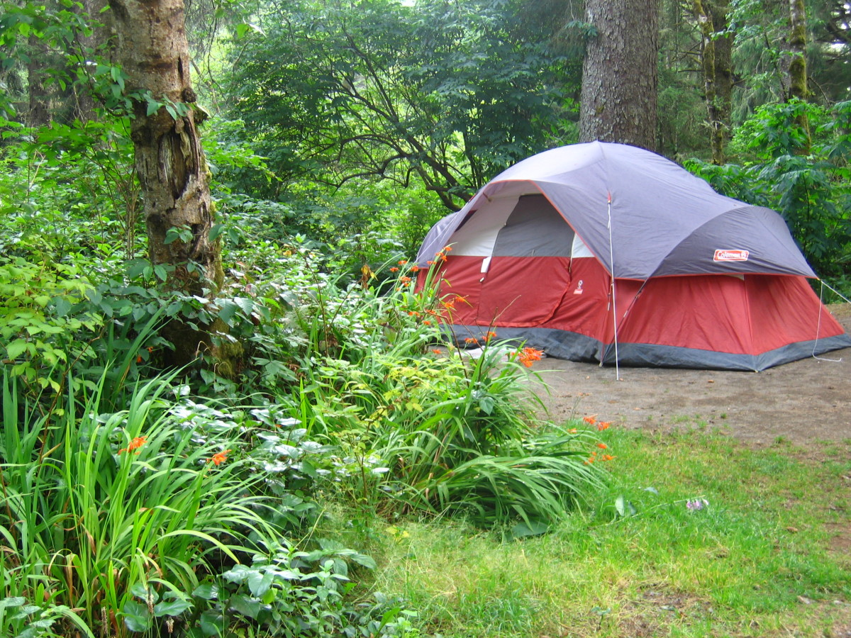 Our tent site at Agate Beach campground.