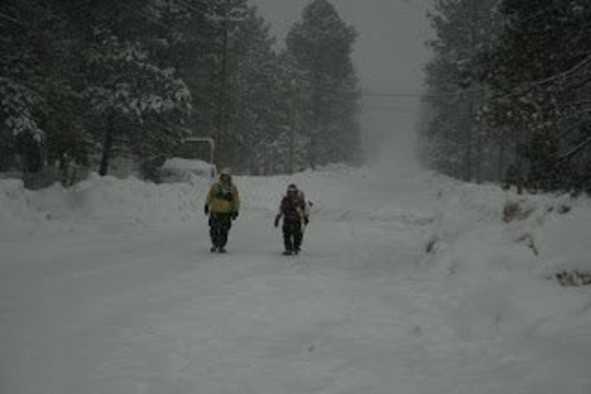 A winter search