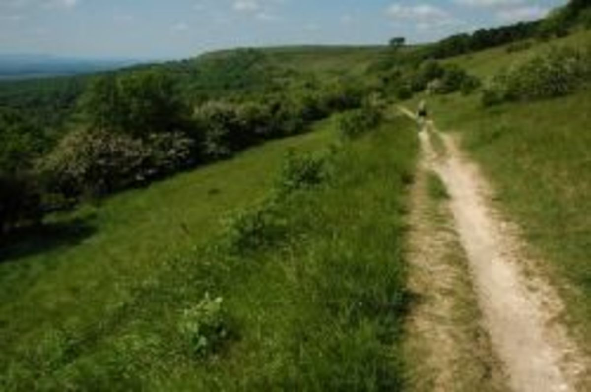 Cotswold Way Trail