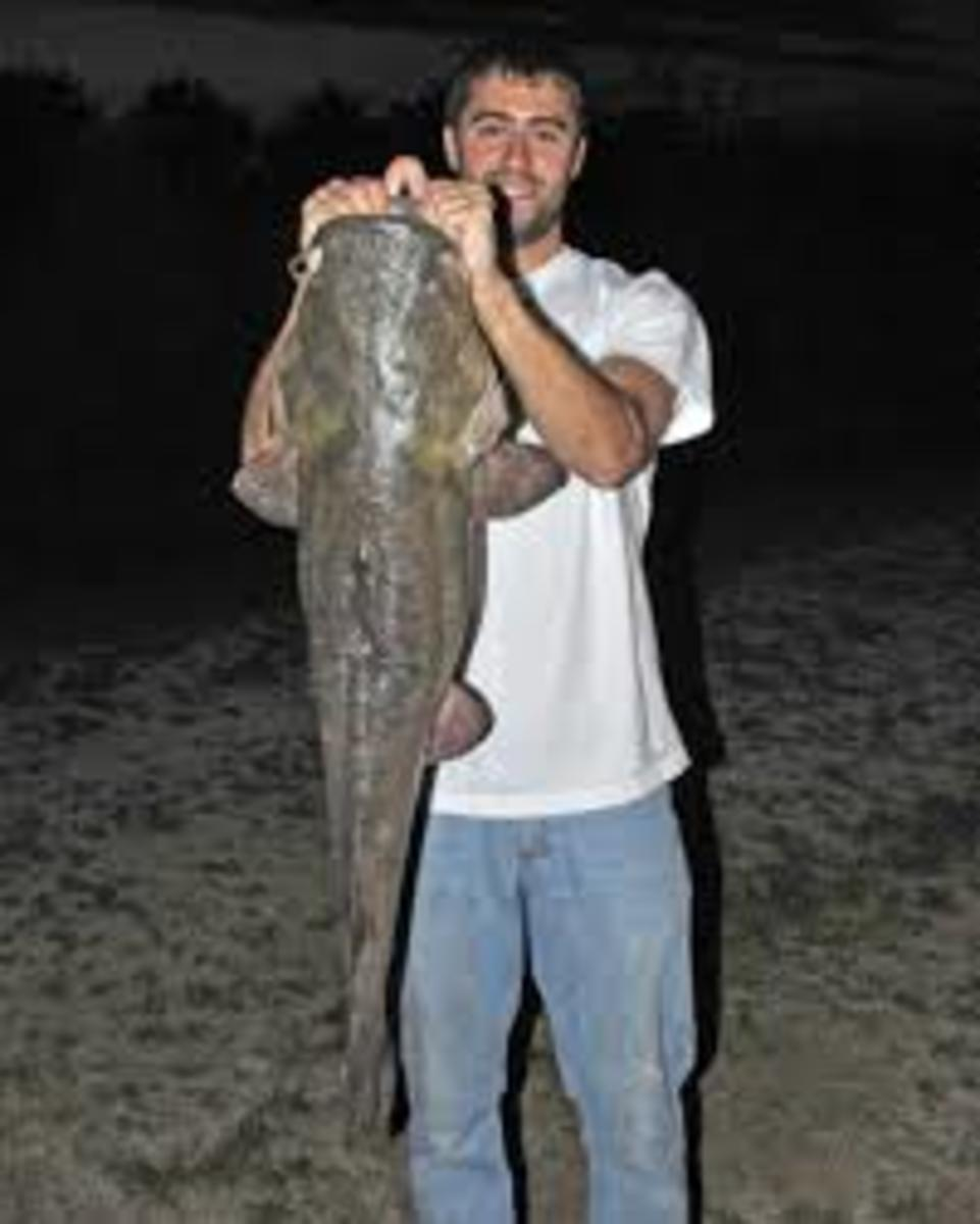 25-pound catfish from a farm pond