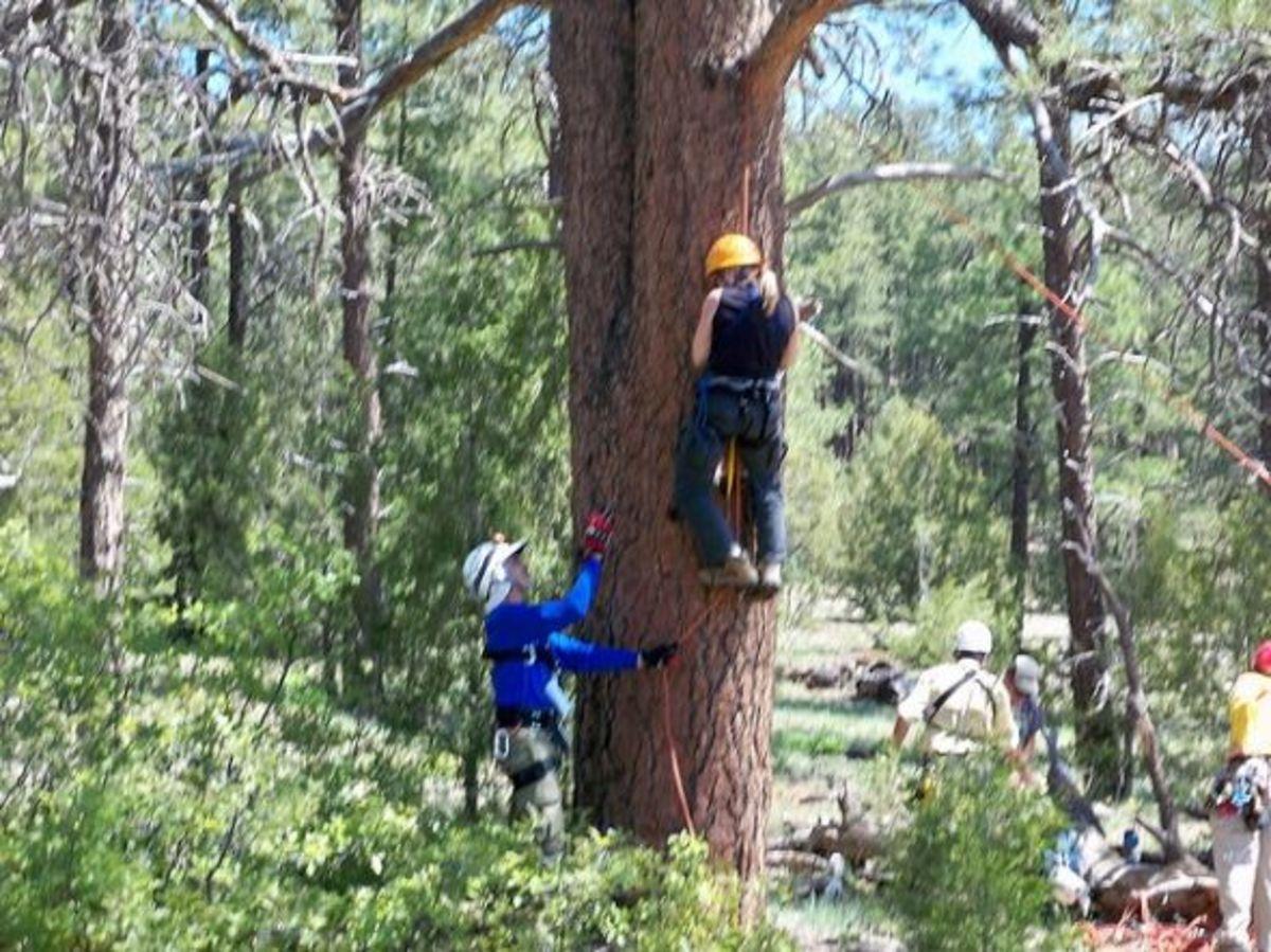 Rock rescue: Practicing ascending