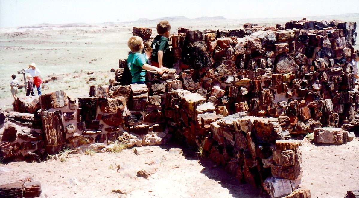 Partially reconstructed Agate House  in the Petrified Forest National Park