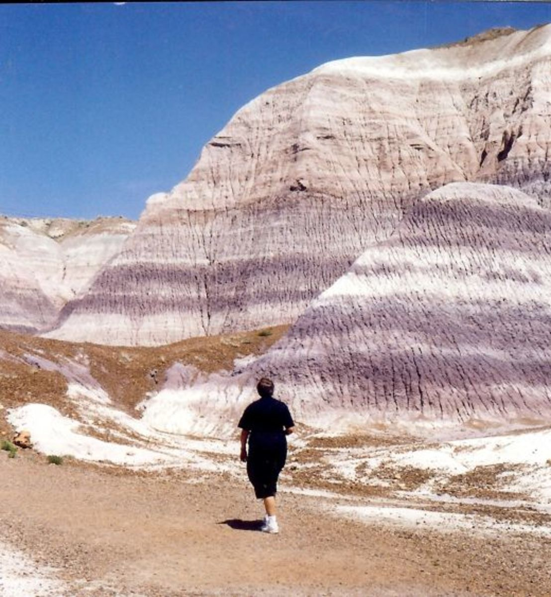 Be sure to carry lots of water with you if walking in the Badlands of the Petrified Forest National Park!