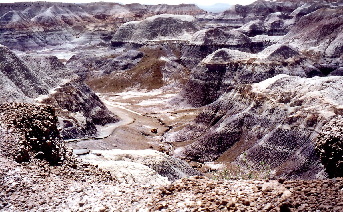Overview of the Badlands in Petrified Forest National Park