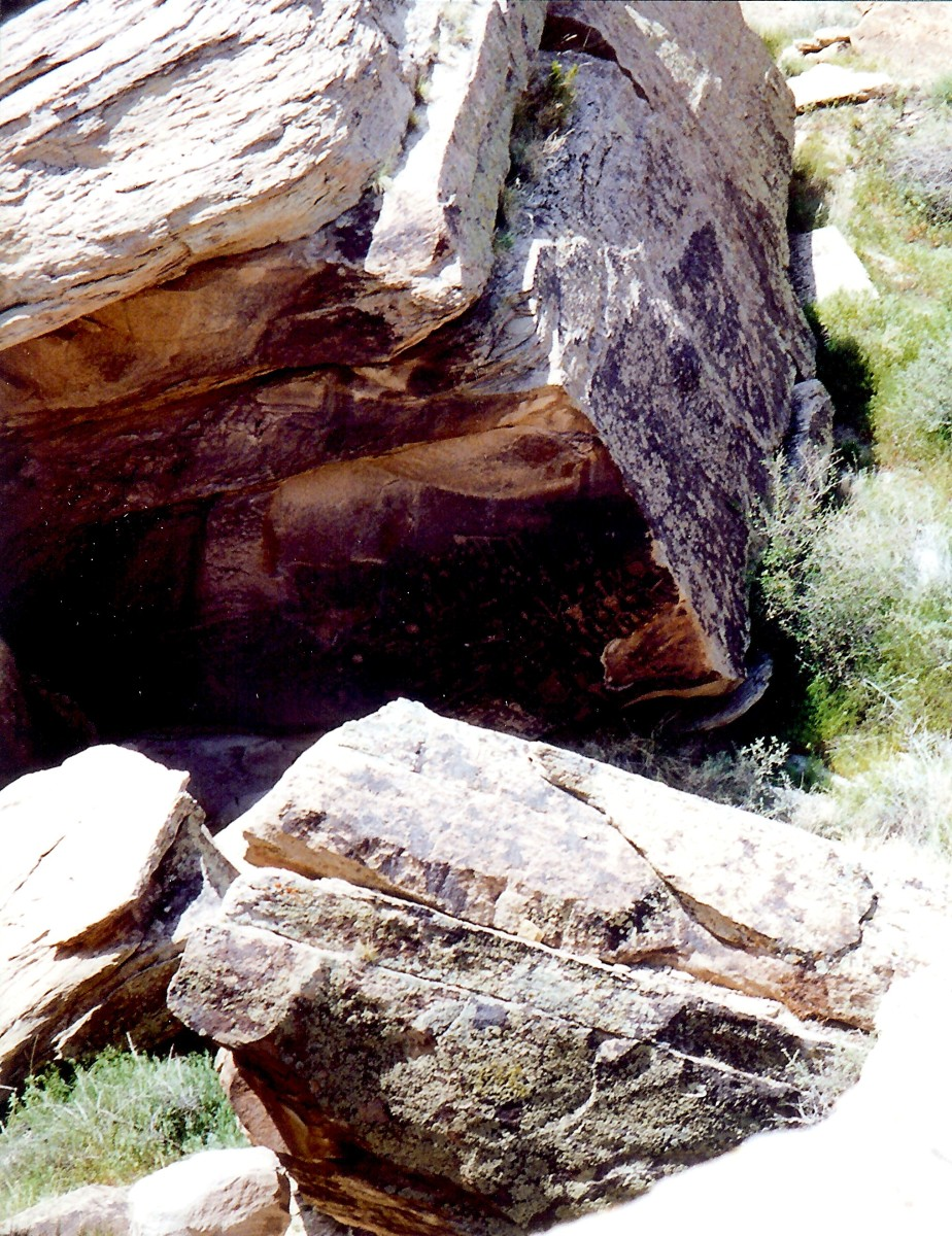 Newspaper rock, some of the petroglyphs  in Petrified Forest National Park