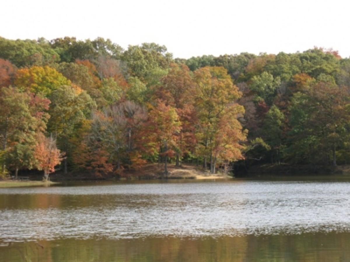 Ogle Lake
