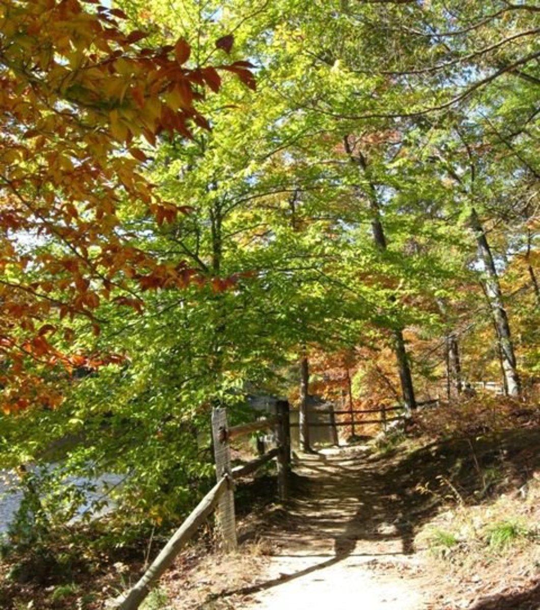 Hiking around Lake Strahl