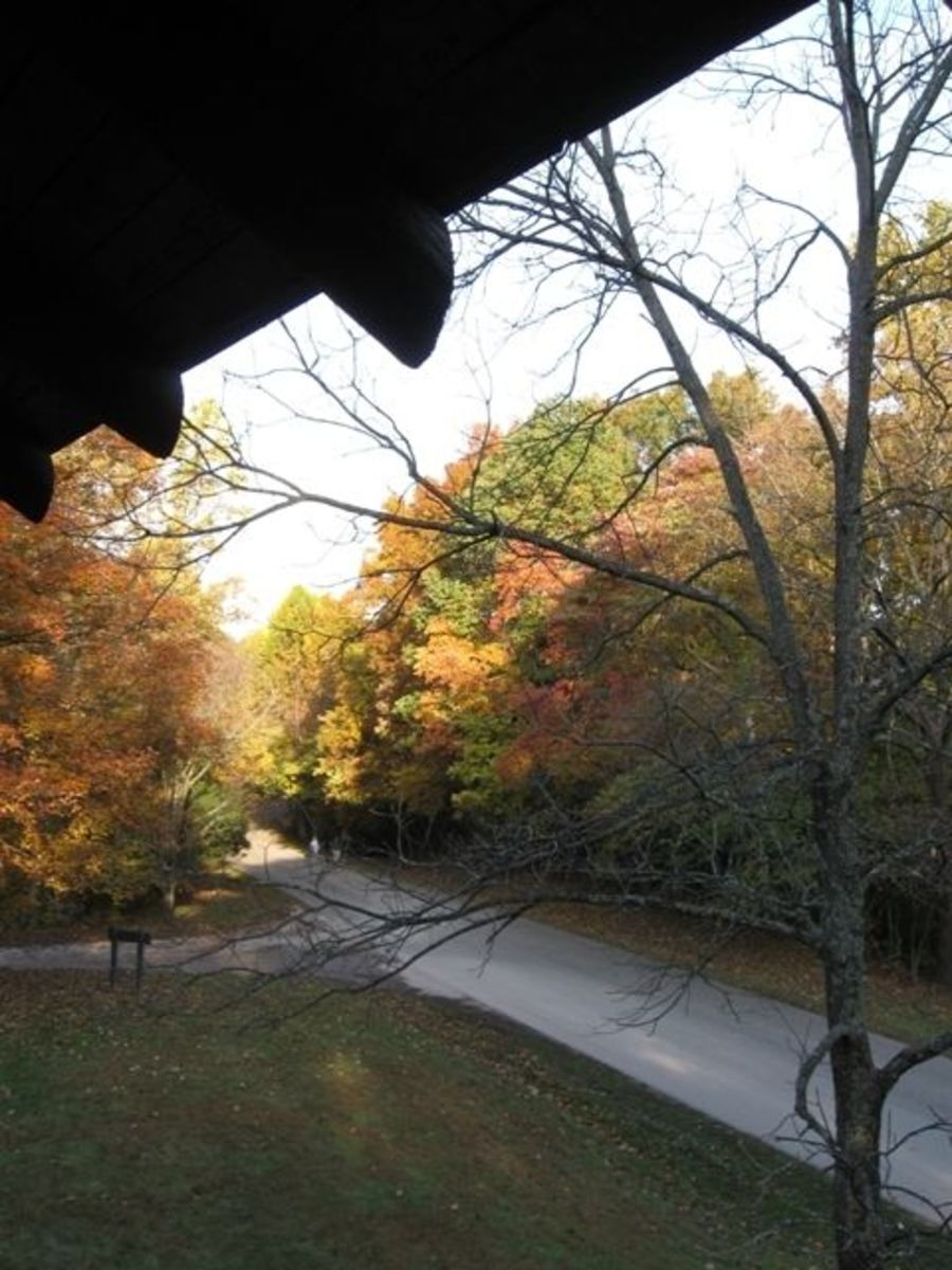Looking out from the West Lookout Tower