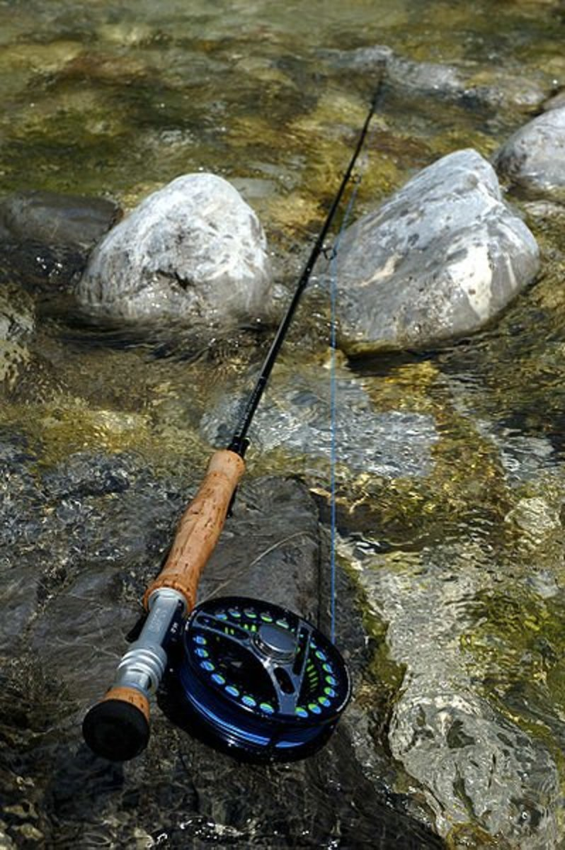 A fly rod and reel combination.