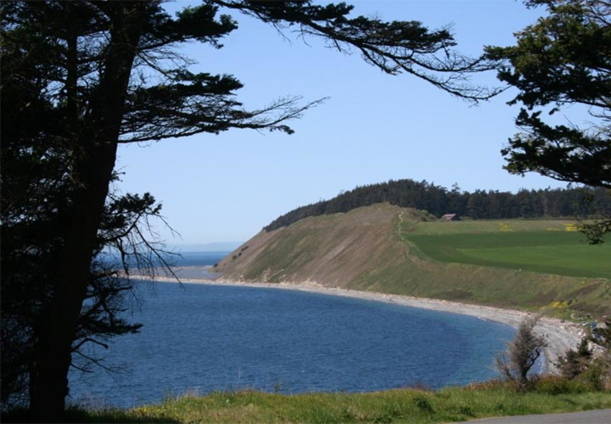 Cliffs at Ft. Ebey's Landing awesome walking beaches great park!