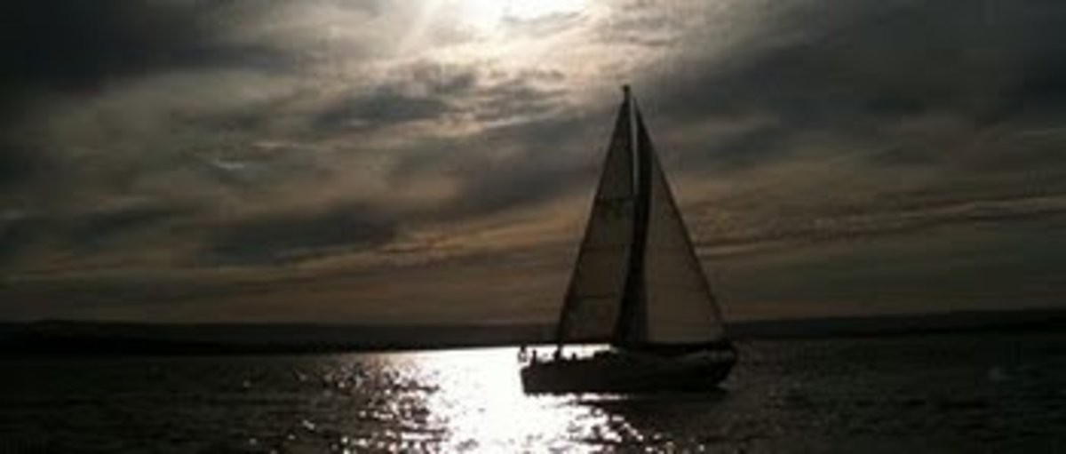 Sailboats are such beautiful creatures.