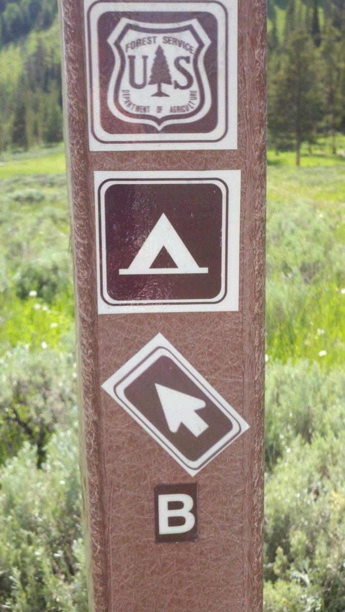 Taylor Fork is so unpublicized, you wouldn't even know that these campsites exist without the markers.
