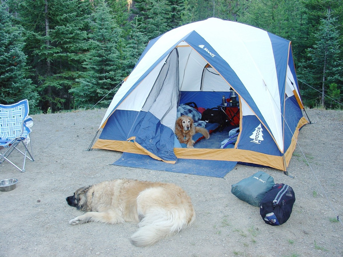 A campsite at Manning Park