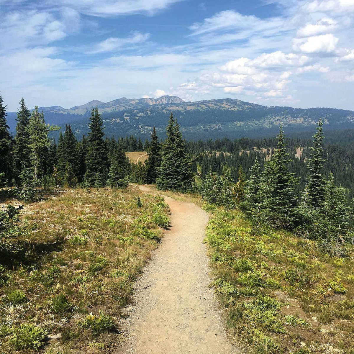 A mountain trail in Manning Park