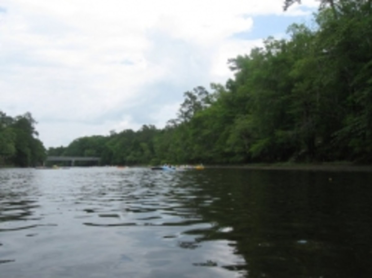 Edisto River Float Access Points