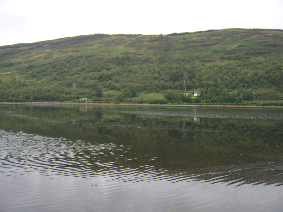 Looking north, across Loch Fyne, from Cairndow
